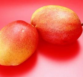 port_mango
