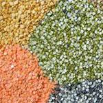 crops_cereals_pulses