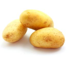 Moreco-Resultats-et-effects-orthagrow-pommes-de-terre-au-MarocOK